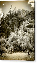 Magic Cliffs Outside Sedona Acrylic Print by Dave Garner