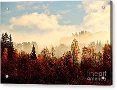 Magic Fall Forest Acrylic Print