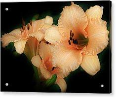 Magic Glow Acrylic Print by Bruce Bley