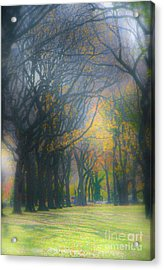 Magic. Here. In Nyc Acrylic Print