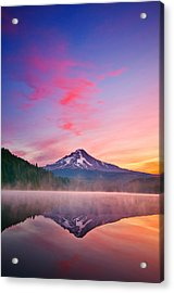 Magic Morning Acrylic Print by Darren  White