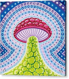 Magic Mushroom Acrylic Print by Christopher Sheehan