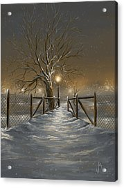 Magic Night Acrylic Print by Veronica Minozzi