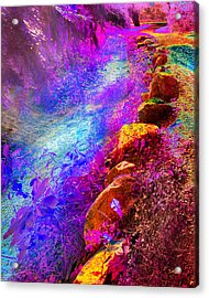 Magic Pathway II Acrylic Print by William Beuther