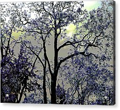 Acrylic Print featuring the digital art Magical Garden by Dale   Ford
