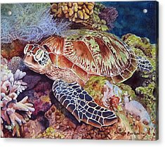 Magical Sea Turtle Acrylic Print by Sharon Farber