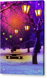 Magical Times Acrylic Print