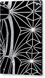 Magnetic Field Lines Acrylic Print by Arkady Kunysz
