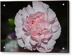 Magnetic Pink Acrylic Print