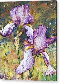 Magnificent Iris Acrylic Print by Steven Boone