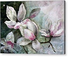 Magnolia Acrylic Print by AmaS Art