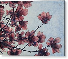 Acrylic Print featuring the painting Magnolia by Andrew Danielsen