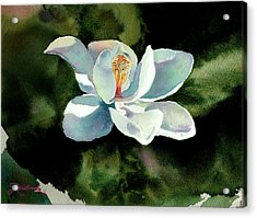 Magnolia At Starwood Glen Acrylic Print