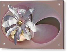 Magnolia Blossom Series 707 Acrylic Print