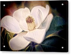 Acrylic Print featuring the photograph Magnolia Dream by Joetta West
