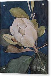 Acrylic Print featuring the painting Magnolia Evening by Nancy Kane Chapman