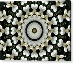 Acrylic Print featuring the photograph Magnolia Hearts Mandala by MM Anderson