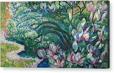 Magnolia In Ordrupgaard Acrylic Print by Olga Sorokina