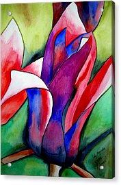 Magnolia Acrylic Print by Sacha Grossel