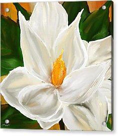 Magnolia's Elegance- Magnolia Paintings Acrylic Print