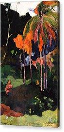 Mahana Ma'a Acrylic Print by Paul Gauguin