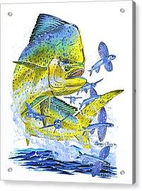 Mahi Mahi Acrylic Print by Carey Chen