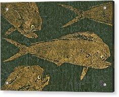 Mahi Mahi On Black W/ Gold Thread Unryu Paper Acrylic Print