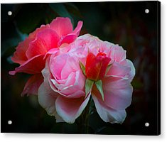 Acrylic Print featuring the photograph Maiden Mother Crone by Patricia Babbitt