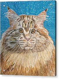 Acrylic Print featuring the painting Maine Coon Cat by Kathy Marrs Chandler