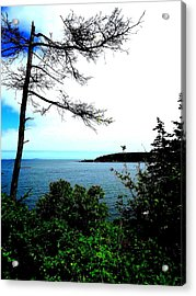 Maine Acrylic Print by Dancingfire Brenda Morrell