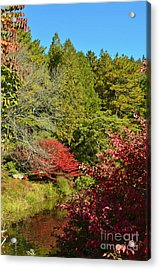 Maine Fall Colors Acrylic Print