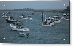 Maine Harbor Acrylic Print by John Wartman