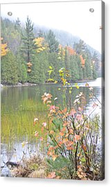 Maine Lake Colors Acrylic Print