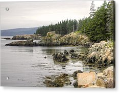 Maine's Beautiful Rocky Shore Acrylic Print