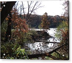 Acrylic Print featuring the photograph Majestic Fall by J L Zarek