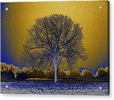 Majestic Gold Acrylic Print