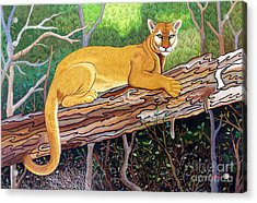 Majestic Hand Embroidery Acrylic Print by To-Tam Gerwe