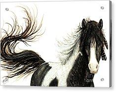 Majestic Horse Series #76 Acrylic Print by AmyLyn Bihrle