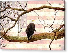 Acrylic Print featuring the photograph Majestic II by Trina  Ansel