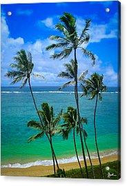 Majestic Palm Trees Acrylic Print by TK Goforth