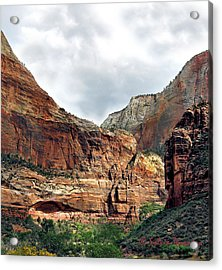 Acrylic Print featuring the photograph Majestic by Sylvia Thornton