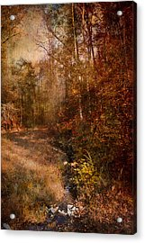 Make A Wish Acrylic Print by Jai Johnson
