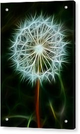Make A Wish Acrylic Print by Joann Copeland-Paul