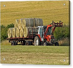 Make Hay When Sun Shines Acrylic Print by Paul Scoullar