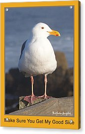 Make Sure You Get My Good Side Poster Acrylic Print by Barbara Snyder