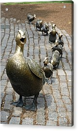 Make Way For Ducklings Acrylic Print by Christiane Schulze Art And Photography