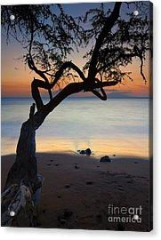 Makena Breeze Acrylic Print by Mike  Dawson