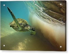 Makena Surfer Acrylic Print by James Roemmling