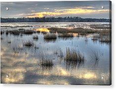 Makepeace Lake Acrylic Print by Greg Vizzi