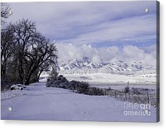 Acrylic Print featuring the photograph Making First Tracks by Kristal Kraft